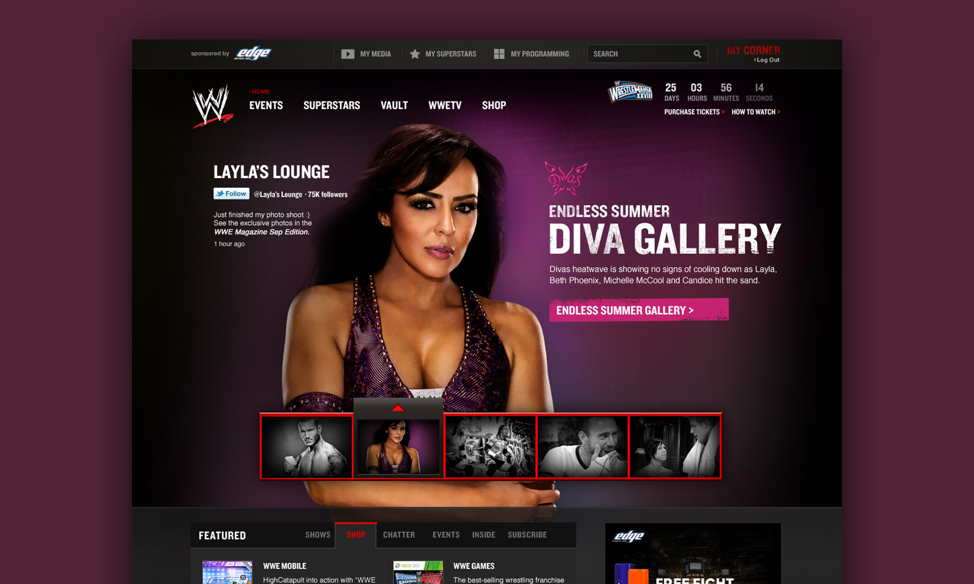 WWE Website Design (pitch)