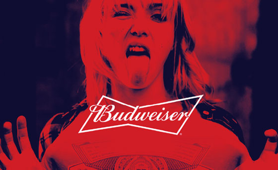Budweiser Brand Extension Guidelines